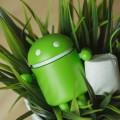 danh-sach-thiet-bi-cap-nhat-duoc-len-android-6-0-update