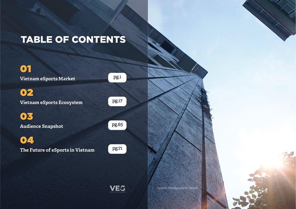 VEG - Tài liệu về Esports cực hữu ích khi làm luận văn tốt nghiệp (2)