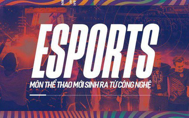 VEG - Tài liệu về Esports cực hữu ích khi làm luận văn tốt nghiệp