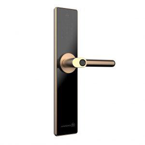 Khóa cửa điện tử thông minh: Giải pháp bảo vệ gia đình an toàn & hiệu quả (1)